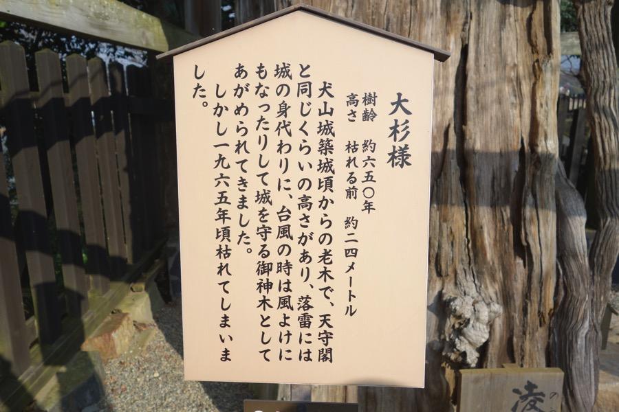 Inuyamazyo41