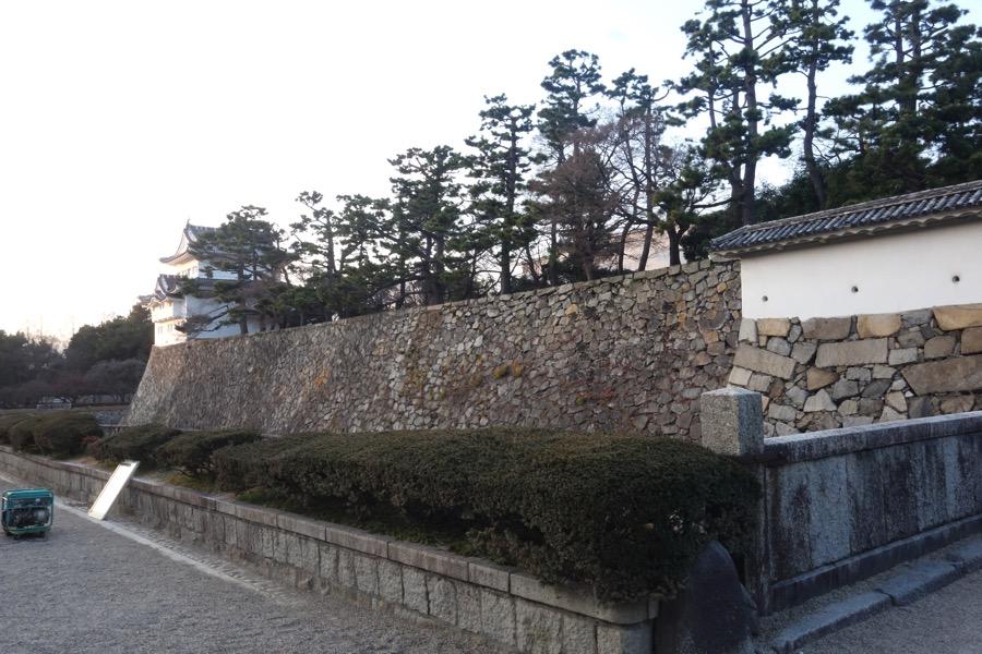 Nagoyazyo28
