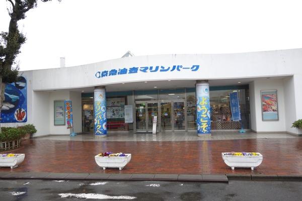 Misakimagurokippu28
