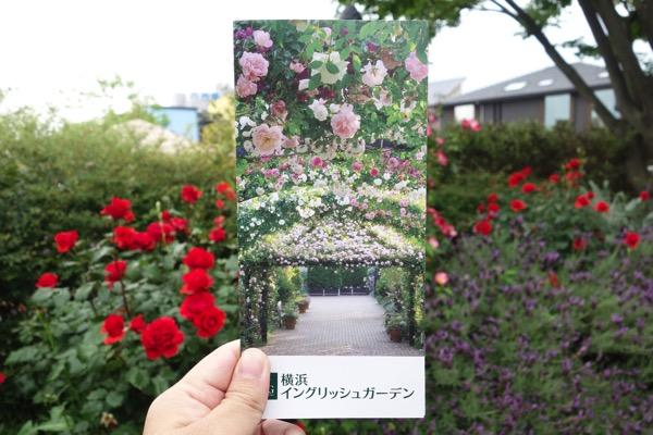 Yokohama ingurissyu gaaden3