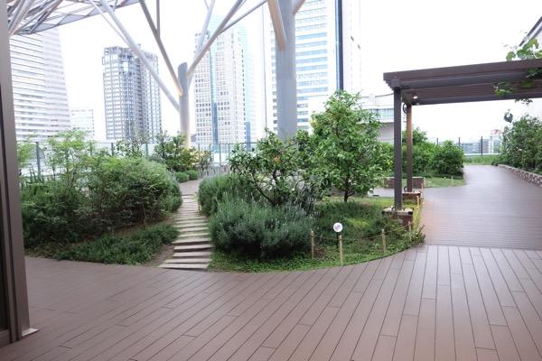 Yokohama maakuizu5