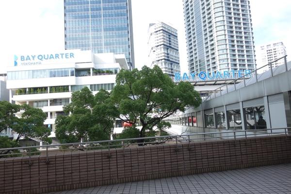 Yokohama siibasu1
