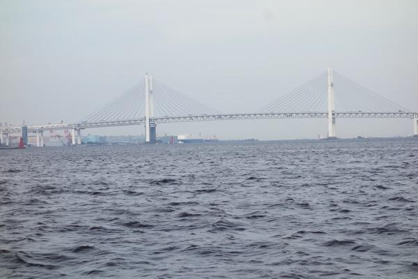 Yokohama siibasu24