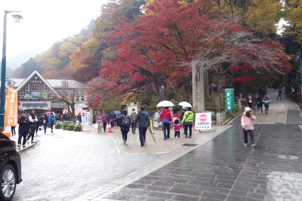 Takaosan 40sai 3