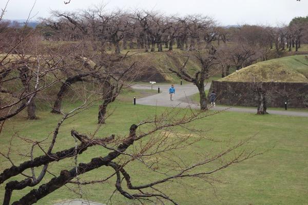 五稜郭、4月は桜が咲いていない2