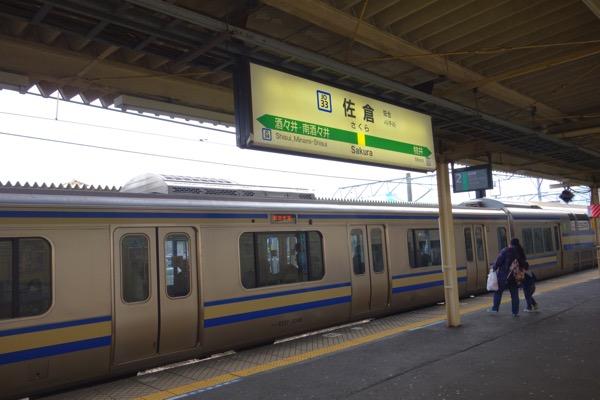 Sakurazyoo akusesu1